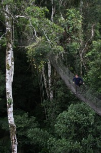 Michael on a precarious bridge in the Amazon Jungle