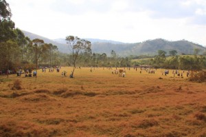 Villagers gathering for a football match in rural Uganda
